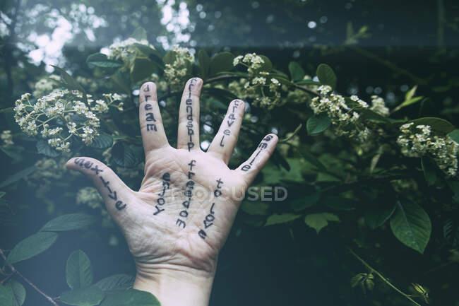 Vista de la mano con mensajes - foto de stock