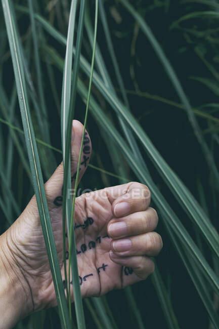 Mensagens na mão II — Fotografia de Stock