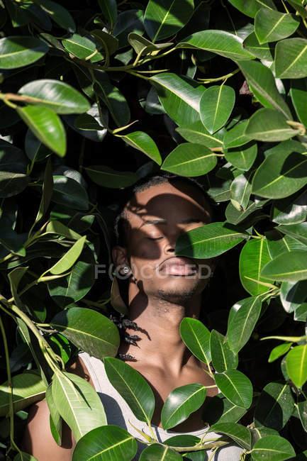 Uomo afroamericano con gli occhi chiusi in piedi nel cespuglio — Foto stock