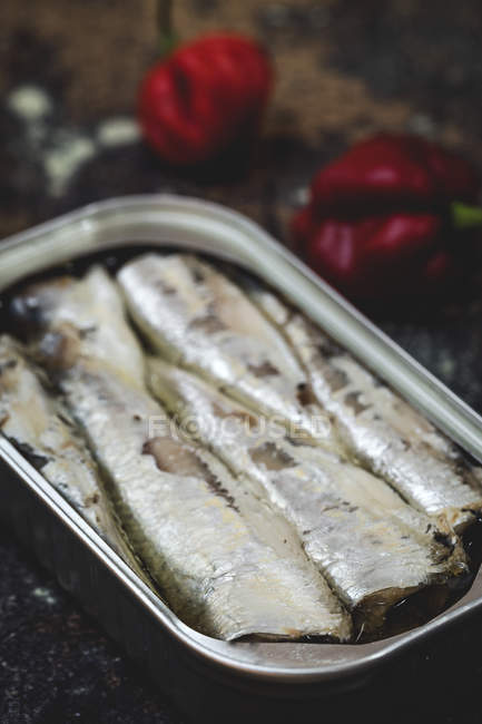 Close-up of open canned sardines on table — Foto stock