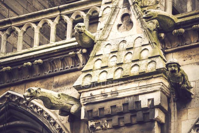 Primer plano de la fachada de Notre Dame de París decorada con estatuas de criaturas ficticias, París, Francia - foto de stock