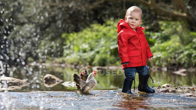 Menino de pé com as galinhas na lagoa no parque e olhando para a câmera. — Fotografia de Stock