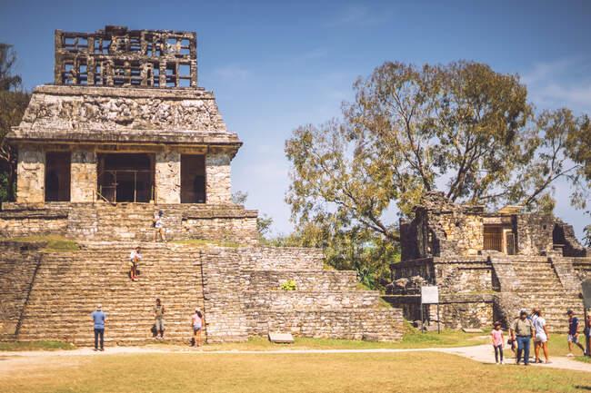 Veduta della straordinaria piramide Maya situata nella città di Palenque in Chiapas, Messico — Foto stock