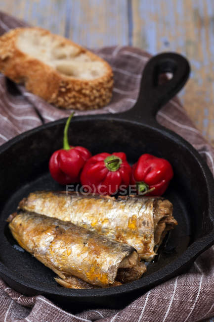 Canned sardines and fresh red peppers in pan — Foto stock