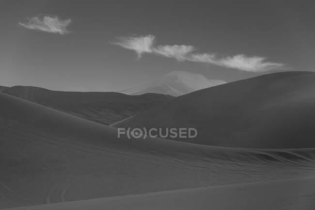 Dunes in the desert — Stock Photo