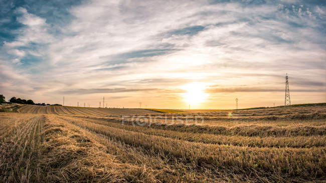 Sunset in cloudy sky above tranquil field — Stock Photo