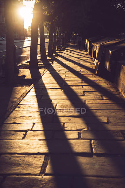 Brick alley with shadows of trees and people walking at sunset, Paris, France — Stock Photo
