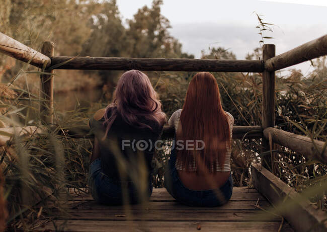 Back view of two women with long hair sitting on wooden pier in lush vegetation and dreaming — Stock Photo