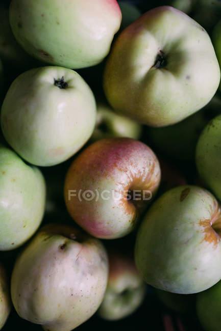 Heap of fresh picked ripe apples — Stock Photo