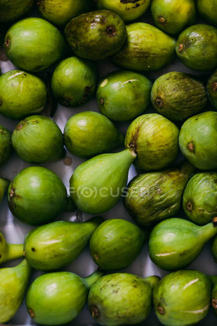 Fresh green whole figs in layer — Stock Photo