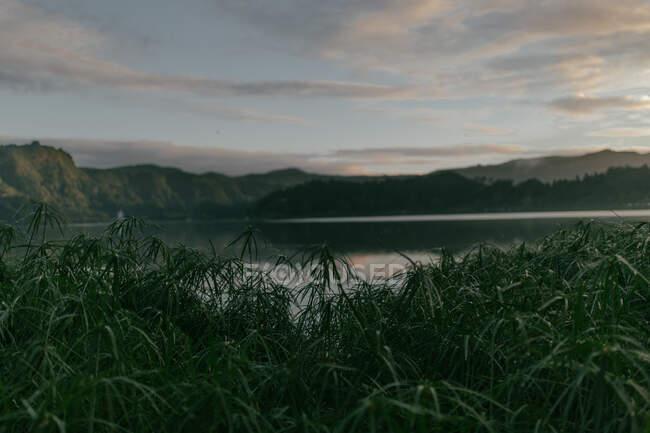 Puro lago tranquilo rodeado de montañas y hierba verde en el fondo del cielo con nubes - foto de stock