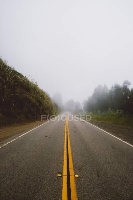 Дивовижний вид на асфальтову дорогу, що проходить через чудові сільські місцевості в туманний день. — стокове фото