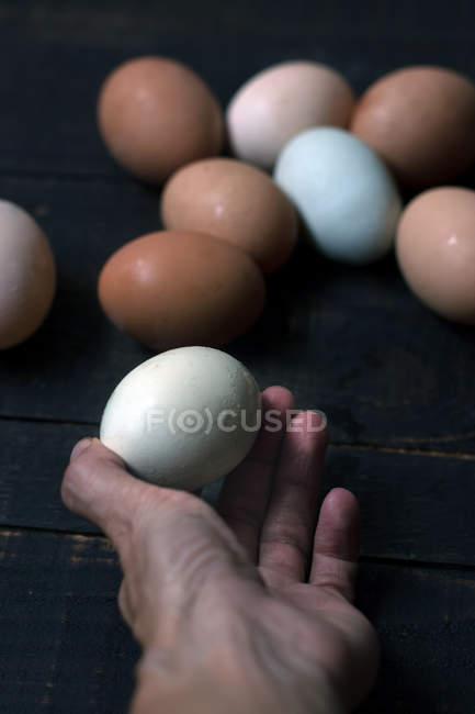 Человеческая рука держа белое яйцо над деревянным столом с кучей свежих сырых яиц — стоковое фото