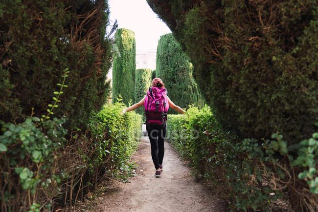 Visão traseira de esportista com mochila rosa andando no parque entre arbustos verdes exuberantes à luz do dia — Fotografia de Stock
