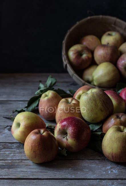 Manzanas frescas maduras y hojas con cesta sobre mesa de madera rústica - foto de stock