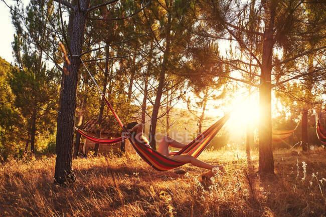 Mujer acostada en hamaca en bosques soleados - foto de stock