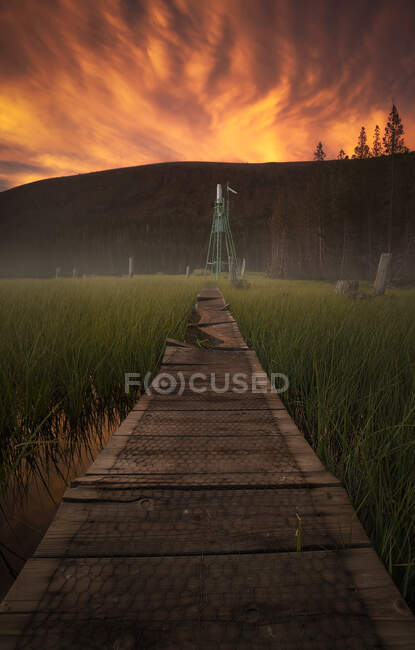 Old broken path going through beautiful paddy field during majestic sunset on West Coast of the USA — Stock Photo