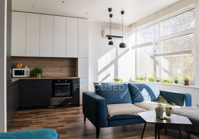 Comfortable sofa standing near kitchen furniture in stylish room of modern apartment on sunny day — Stock Photo
