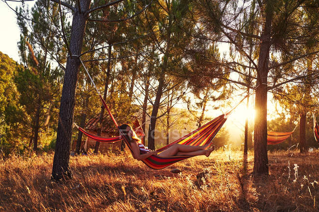 Woman lying in hammock at sunny woods — Stock Photo