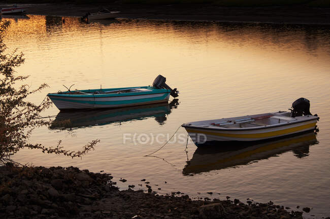 Azure and yellow with white motor boats on coast with small rocks and bush at evening with other transport on background — Stock Photo