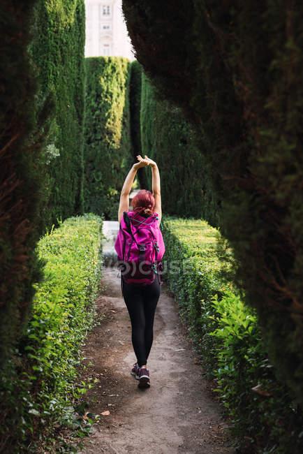Вид сзади спортсменки с розовым рюкзаком, гуляющей в парке между пышными зелеными кустами при дневном свете — стоковое фото