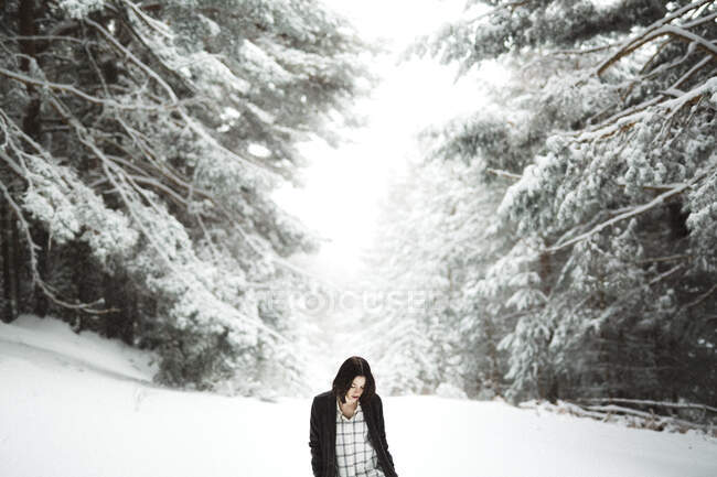 Pretty young female in stylish outfit looking away while standing near tree covered with snow on cold day in wonderful countryside — Stock Photo