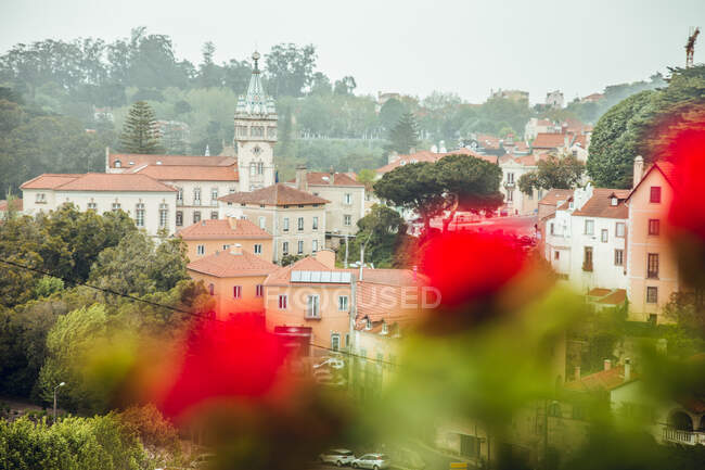 Вид сверху на улицу с домами в Португалии — стоковое фото