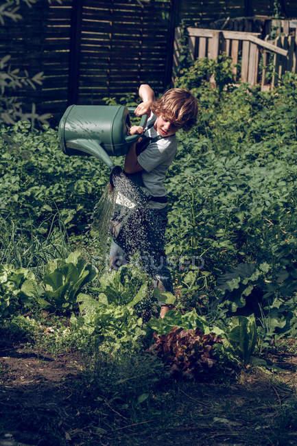 Kind gießt Pflanzen im Garten — Stockfoto