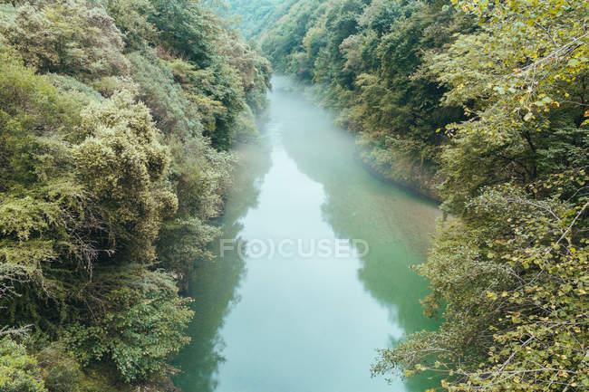 Acqua blu con foschia sopra che scorre lentamente tra le sponde con vegetazione lussureggiante, Asturias — Foto stock