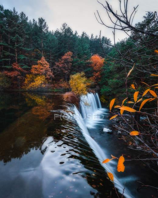 Брызги водопада и осенняя листва лес — стоковое фото