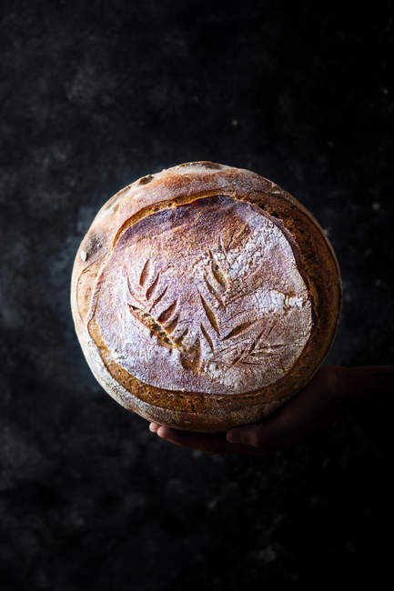 Closeup of human hand holding loaf of fresh bread on dark background — Stock Photo
