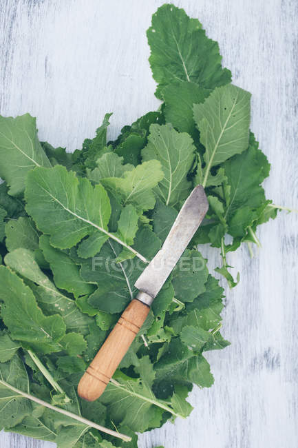 Knife on heap of green leaves on white wooden table — Stock Photo