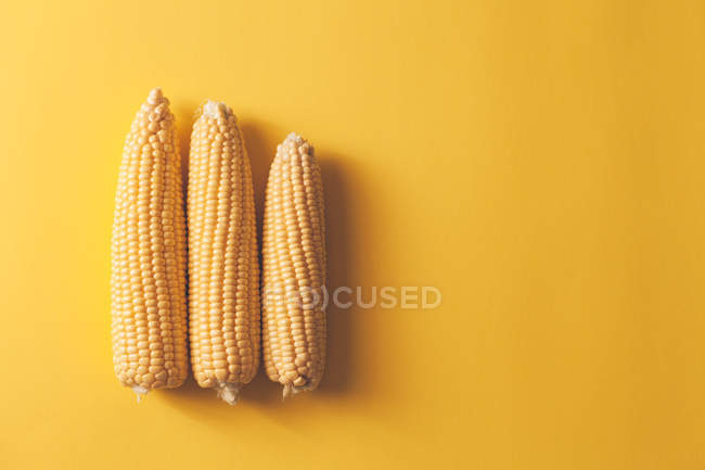 Ripe sweet corn cobs on yellow background — Stock Photo