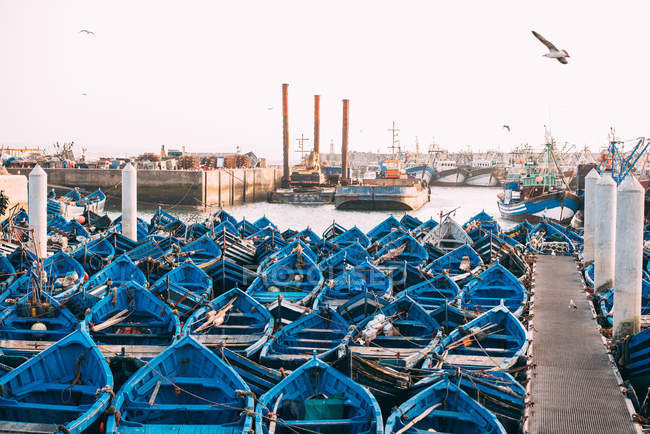Fishing boats anchored in harbor of Essaouira, Morocco — Stock Photo