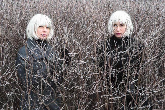 Giovani donne in abito scuro tra cespuglio senza fogliame guardando la fotocamera in Lituania — Foto stock