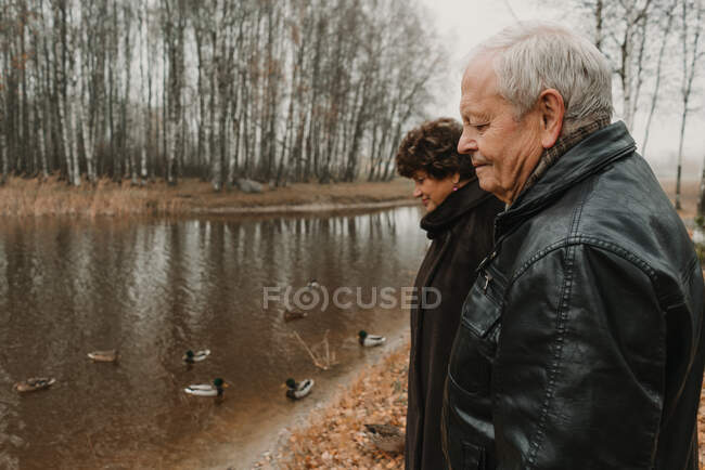 Side view of elderly man and woman standing near water and looking at ducks in autumn park — Stock Photo