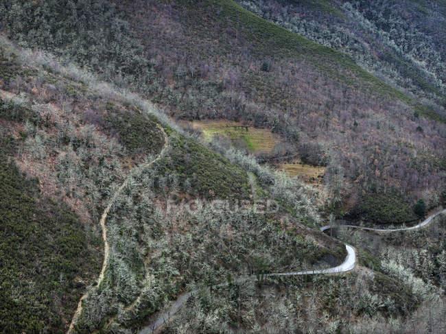 Вид с воздуха на склон горы с тихими холодными лесами и дорогами — стоковое фото