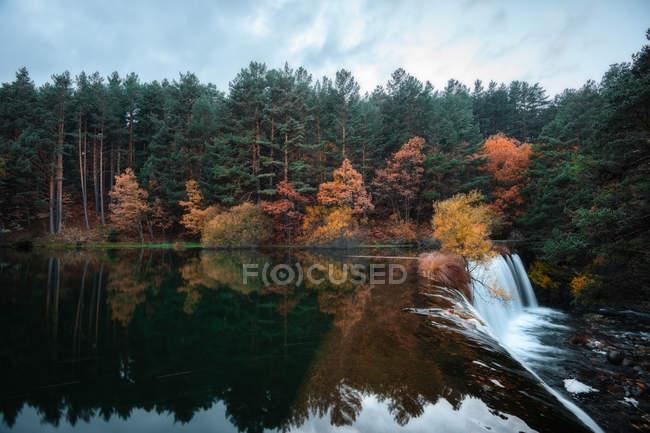 Водопад и осенняя лесная листва — стоковое фото