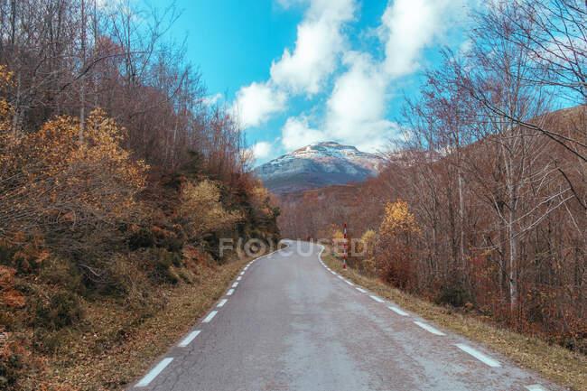 Perspectiva de la carretera pavimentada vacía huyendo entre árboles desnudos otoñales sobre el fondo de las montañas, España - foto de stock