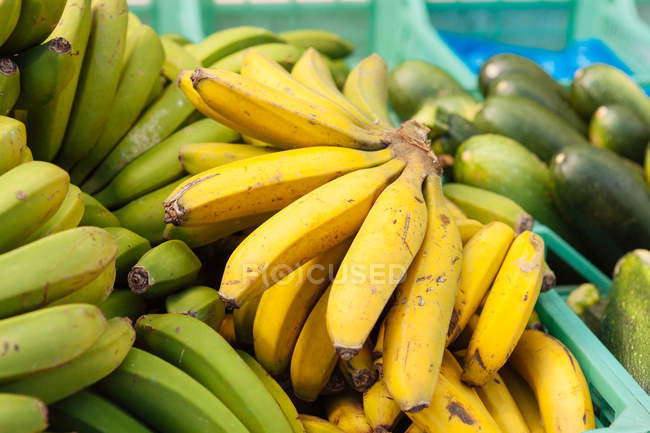 Жовтий і зелений банани в купі на фермерському ринку — стокове фото