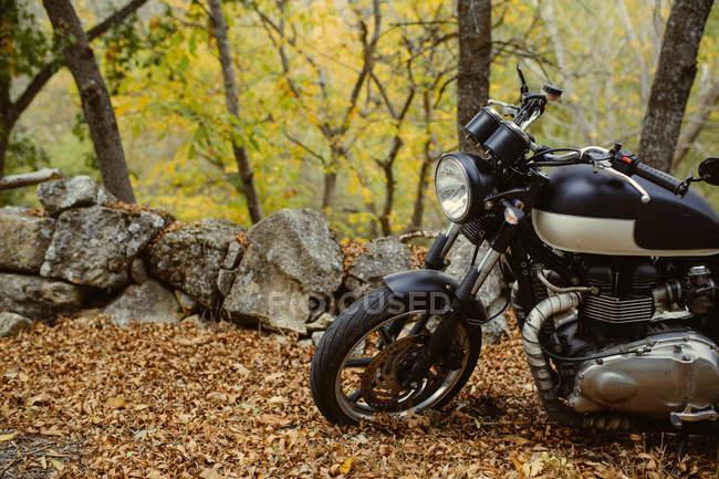 Café piloto moto estacionado em uma estrada entre árvores no outono — Fotografia de Stock