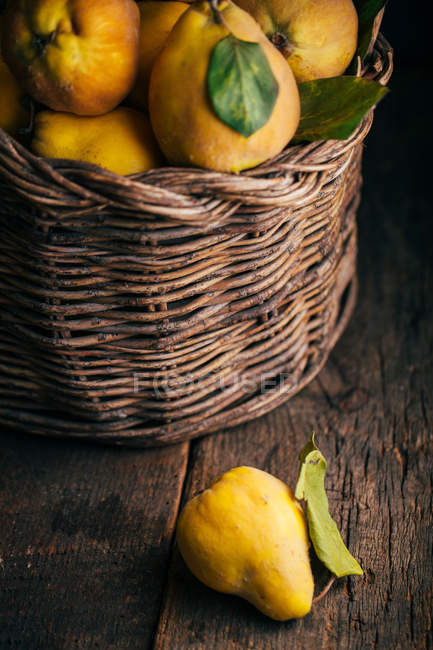Fresh picked quinces in basket on dark wooden background — Stock Photo