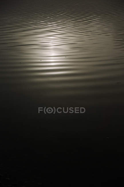 Black and white closeup water of lake with reflection of sunlight — Stock Photo