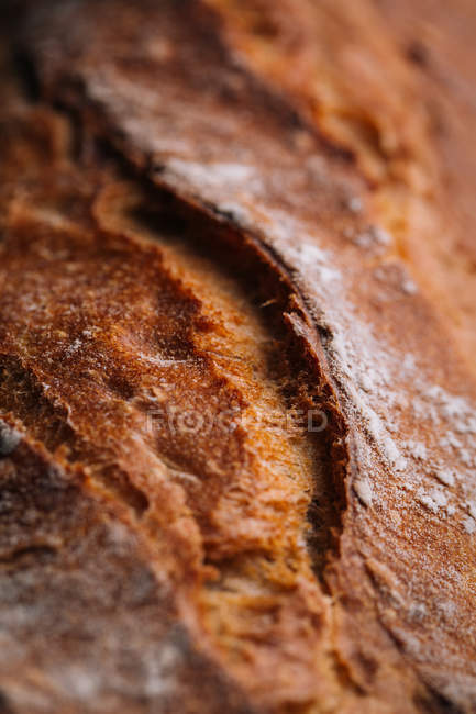 Closeup of homemade rustic bread loaf — Stock Photo