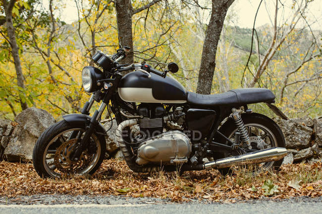 Cafe racer motorbike parked on a road between trees in autumn — Stock Photo