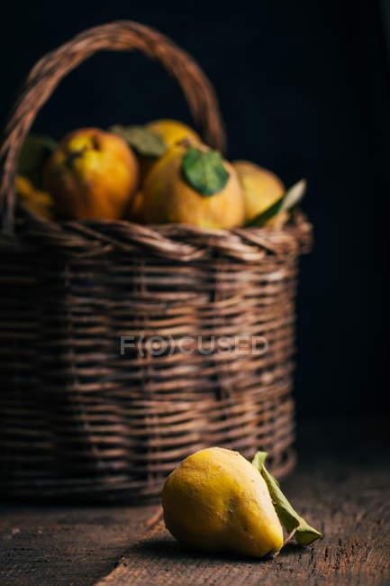 Айва фрукти на темному тлі дерев'яні з кошиком на тлі — стокове фото