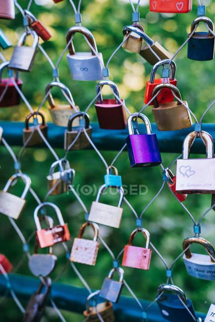 Bündel verschiedener Liebesschlösser hängen am Netzzaun vor verschwommenem Hintergrund eines grünen Parks — Stockfoto