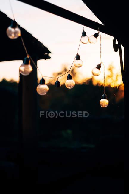 Фея лампочки висит в сельской местности на размытом фоне солнца — стоковое фото