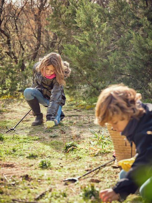 Бічний вид підлітків, які чистять сміття з землі в парку біля контейнерів і прибиральників. — стокове фото