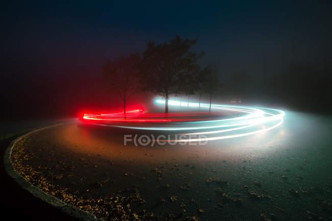 Яркие огни тропы между деревьями и туманом вечером в сельской местности — стоковое фото